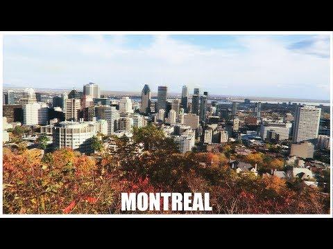 MONTRÉAL / VLOG #2 [Le plateau & le parc du Mont-Royal]