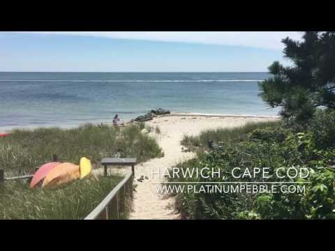 Enjoy the best of Cape Cod at a Luxury Inn, the Platinum Pebble Boutique Inn