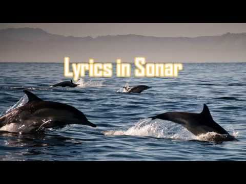 TeknoAXE's Royalty Free Music - Lyrics in Sonar -- Dubstep/Chillstep -- Royalty Free Music