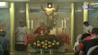 Domingo de Pentecostés – Ciclo C – 9 de junio de 2019 - 11:00 AM