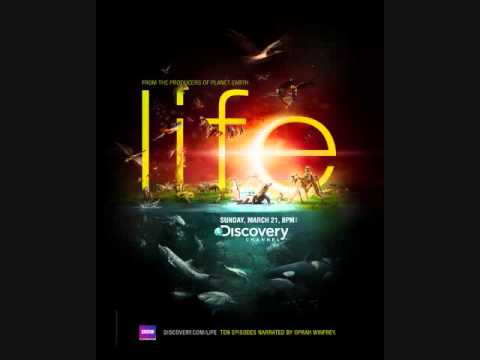 Discovery Channel Life Song