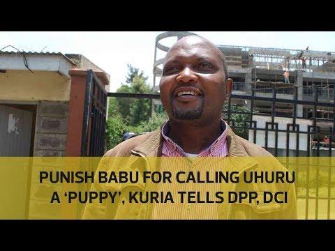 Punish Babu for caliing Uhuru a 'puppy', Kuria tells DPP, DCI