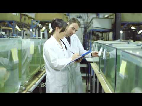 University of Stirling - Introduction