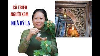 Căn nhà kỳ lạ hút 1 triệu người xem, cô chủ nhà được thưởng II ĐỘC LẠ BÌNH DƯƠNG