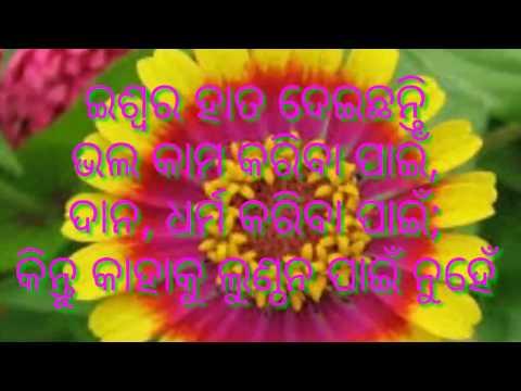 Odia Anabana Video.. Odia Loka Bani ..odia Loka Katha Image Video...chanakya Niti.. By S B For You.