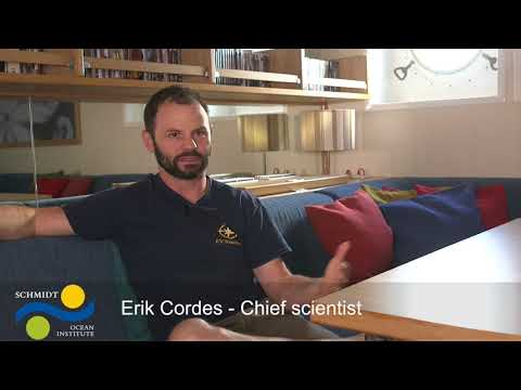 FK171005 Week 1 ~ Discovering Deep Sea Corals of the Phoenix Islands