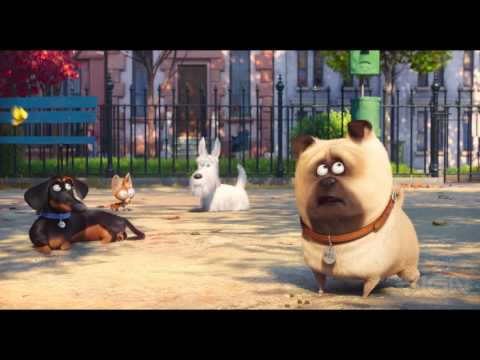 The Secret Life of Pets - Official Trailer #2
