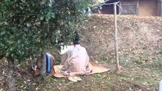 鳥取県南部町井上で縁結びの神サイノカミさんの申し上げがありました。 2013.12.1.