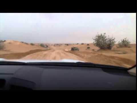 DUBAI • Desert Safari Tour