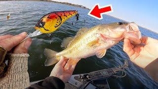 Fishing Mid Depth Crankbaits for Pre Spawn Bass