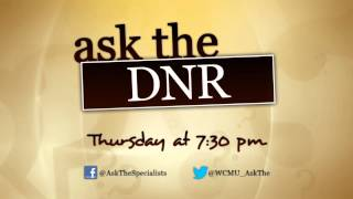 ask the specialists dnr one hour special october 18th 7 30 p m