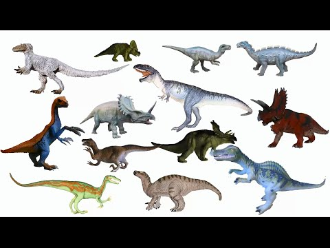 Cretaceous Dinosaurs 2 - Spinosaurus, Yutyrannus & More - The Kids