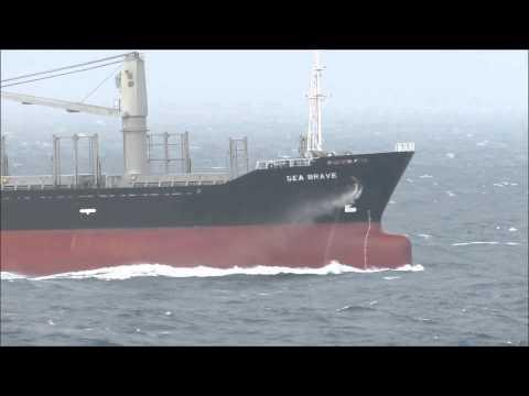 Navio SEA BRAVE em alto mar