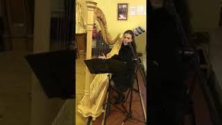 She moved through the fair- harp & voice YouTube Thumbnail