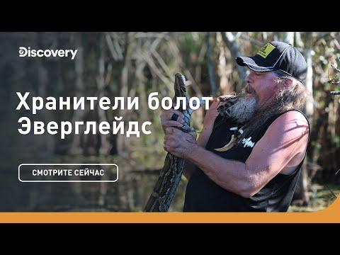Секреты ночной охоты | Хранители болот Эверглейдс | Discovery