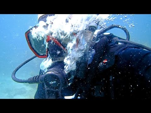 Scuba Diving Before & Snorkeling After Hurricane Irma