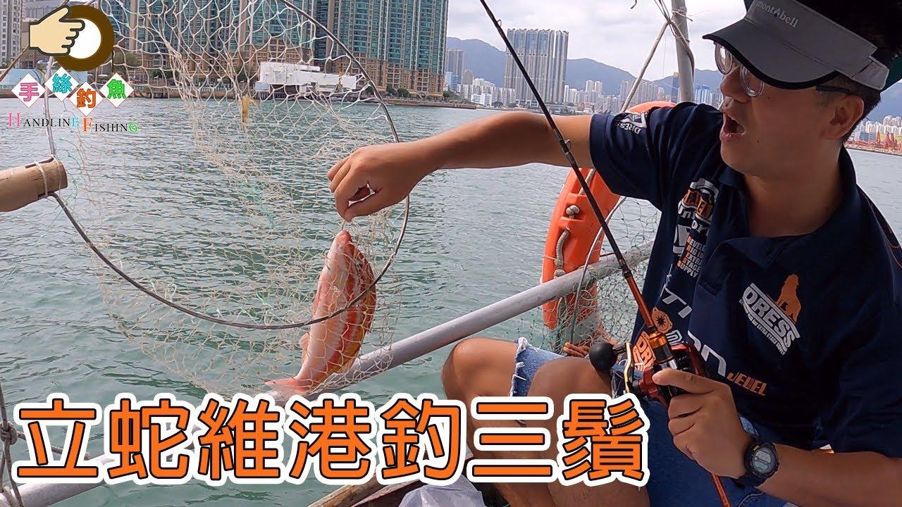 立蛇維港釣三鬚 | 基哥 | 香港釣魚 | 手絲釣魚 | #Shorts