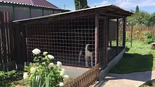 видео Вольер для собаки