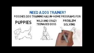 Dog Obedience Training Colonia Nj - Free Consult - 800-906-1560