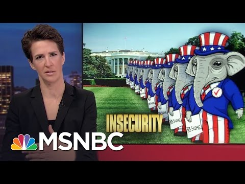 Donald Trump Makes Dubious National Security Pick, KT McFarland  Rachel Maddow  MSNBC