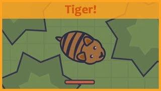 Moomoo.io - NEW TIGER ANIMAL! Update idea with gameplay!