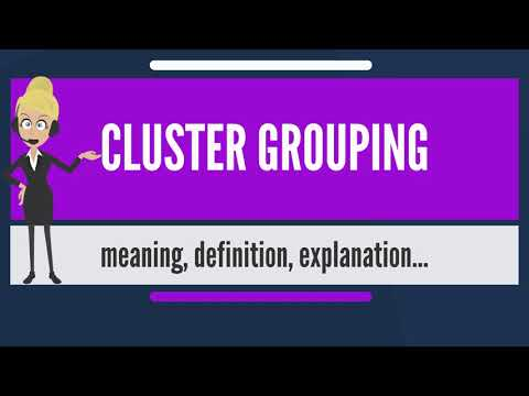 What is CLUSTER GROUPING? What does CLUSTER GROUPING mean? CLUSTER GROUPING meaning & explanation