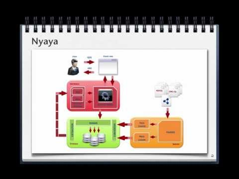 Nyaya: a System Supporting the Uniform Management of Large Sets of Semantic Data