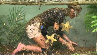 Alex Best Gets Feathered Searching For Stars | I'm A Celebrity... Get Me Out Of Here!