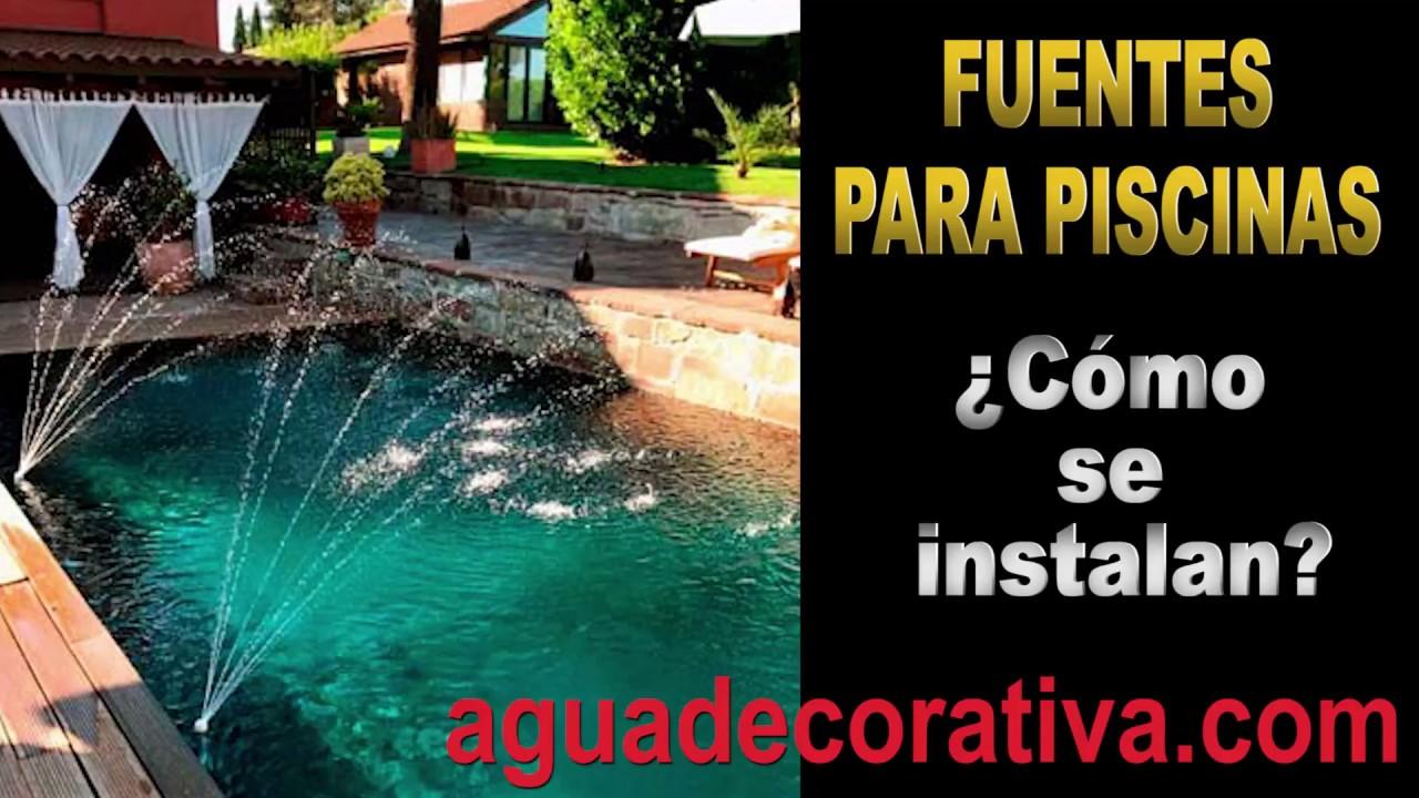 C mo instalar una fuente en tu piscina f cilmente y en for Piscina para tortugas