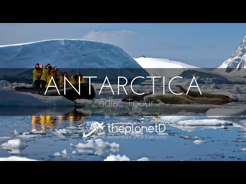 A Zodiac Tour Through Antarctica