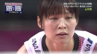 女子バレーボールWGP2014 日本はブラジルに負け銀メダル