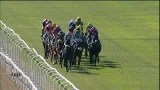 Vidéo de la course PMU DSTV GOLD VASE