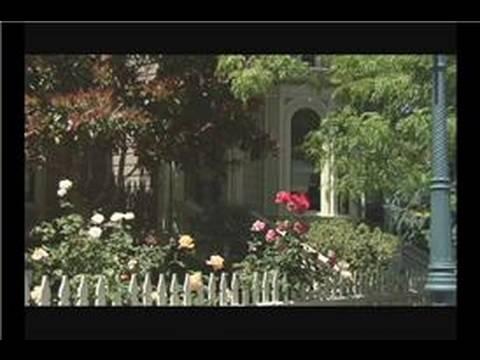 Oakland Tourism : Oakland Preservation Park: Street Scape