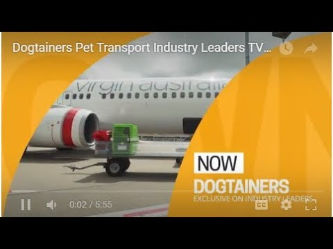 Home - Dogtainers | Domestic and International Pet Transport