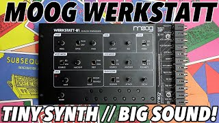 MOOG WERKSTATT-01 & CV EXPANDER // Big analogue synth tone in a tiny affordable package