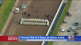 Two Horse Deaths In Two Days At Santa Anita, Death Toll Now 41 Since December 2018
