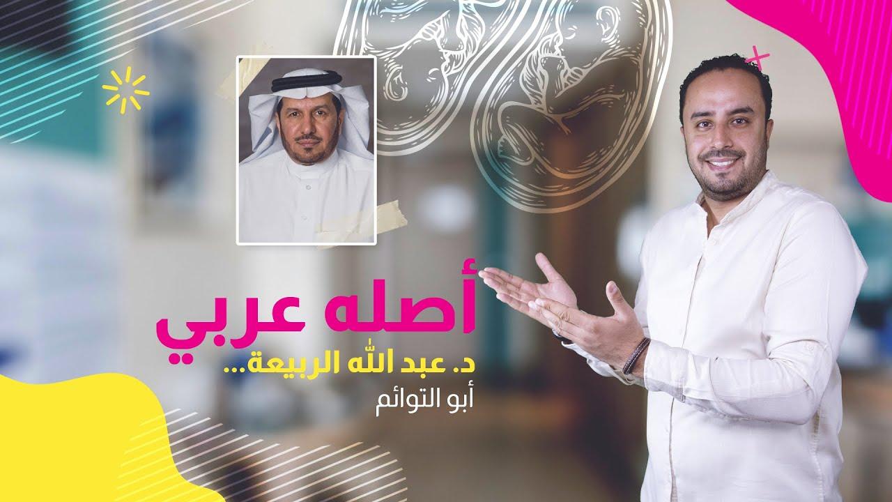 أصله عربي   دكتور عبد الله الربيعة