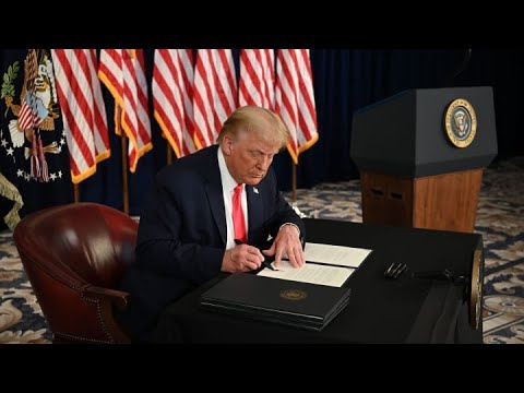 Donald Trump's executive order will benefit him tremendously if this course  continues: Strategist - YouTube