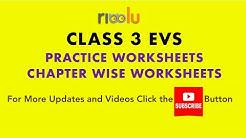 CBSE Class 3 EVS Practice Worksheets Papers