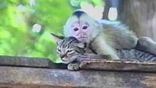 """Кайфуем! Тебя опять я поцелую ...а вот така она Любовь !!!"""