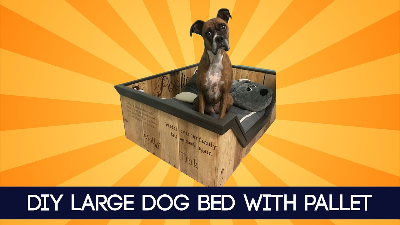 Diy Large Dog Bed With Pallet Idea Youtube