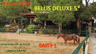 Отдых в Турции 2020 Конный клуб Зоопарк BELLIS DELUXE 5 Анталия Белек Отель для семейного отдыха