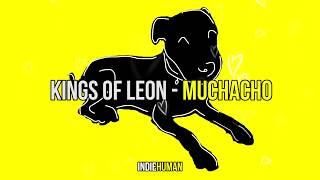 Kings Of Leon - Muchacho | Subtítulos en Español