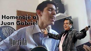 Gambar cover Querida / Homenaje a Juan Gabriel (Cover Mario M. Segovia)