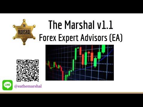 เทรด Forex อย่างปลอดภัย ทำกำไร ด้วย EA The Marshal   สอนเทรด   MT4   Trading forex   Safety