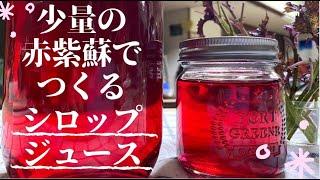 【自家製赤紫蘇】少量の赤紫蘇の使い道。グラニュー糖とリンゴ酢で赤紫蘇シロップ・ジュースを作る ~Making red shiso juice~