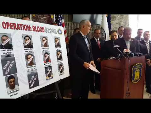 Nine members of the Blood Stone Gang were arrested this week, with three more at large in Yonkers.