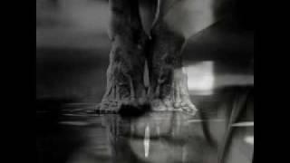 Kookaburra band dedica un brano agli alluvionati di Messina - Lacrime di piombo -