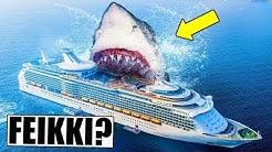 Maailman suurin hai löydettiin - vai onko tämä feikki?