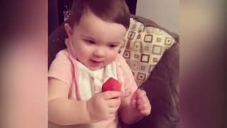 Top 10 Funniest Babies Vs Fruit That Will Make You Laugh Hard | Funny Babies and Pets